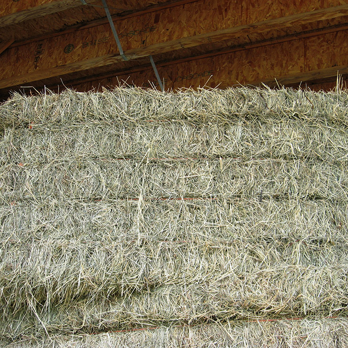 Large square brome hay bales at Country Garden Farms, Alaska